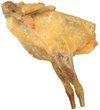 老母鶏(ガジーナ)