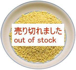 大黄米(もちきび)  画像
